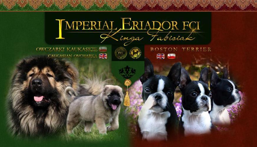 Imperial Eriador